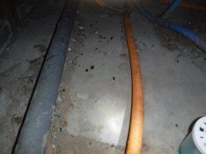 ボウケン 床下 ネズミ